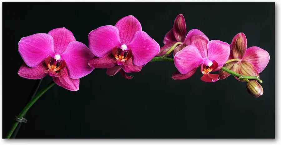 Tablou pe pe sticlă Orhidee