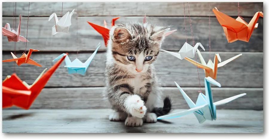 Tablou pe pe sticlă Cat cu păsări de hârtie