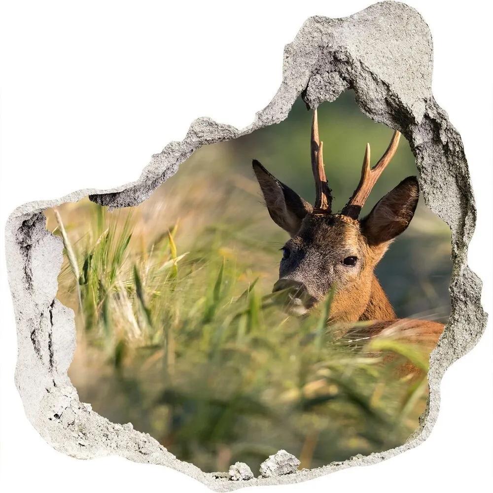Fototapet un zid spart cu priveliște Deer în domeniu