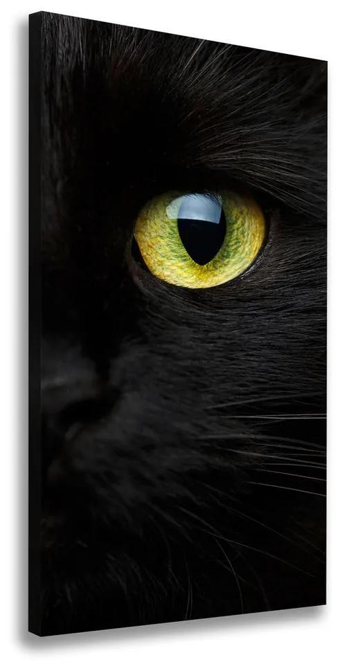Print pe canvas Ochi de pisica