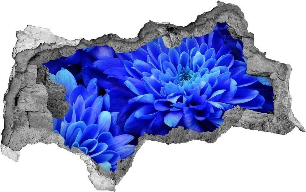 Autocolant gaură 3D Aster albastru