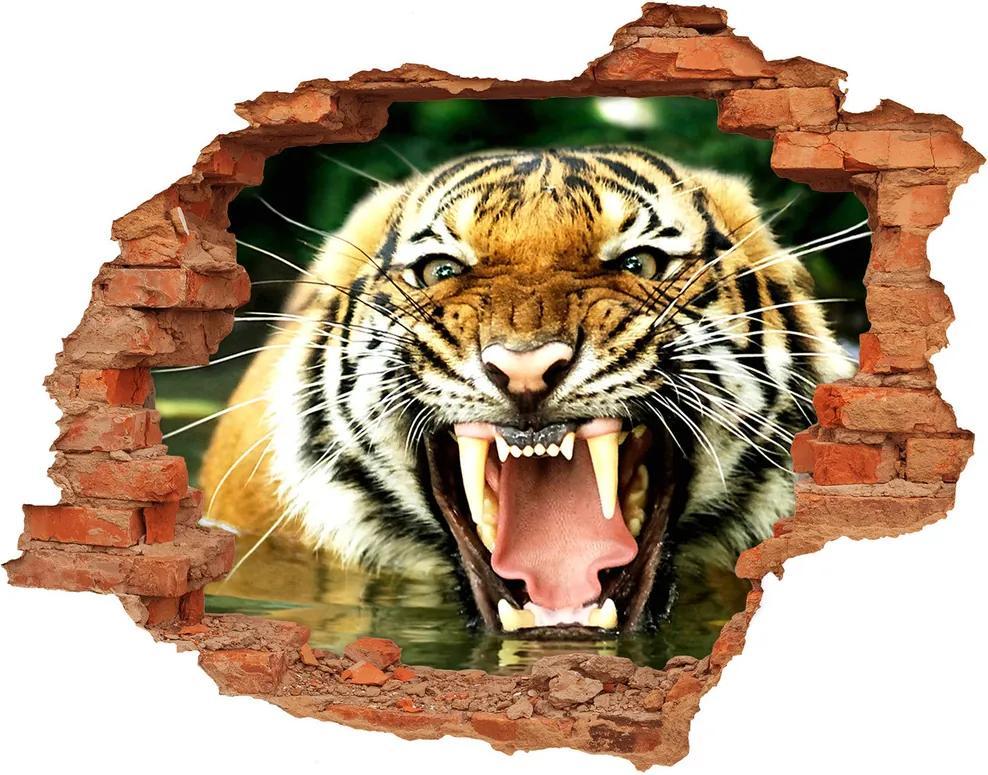 Fototapet un zid spart cu priveliște Hohotitor tigru