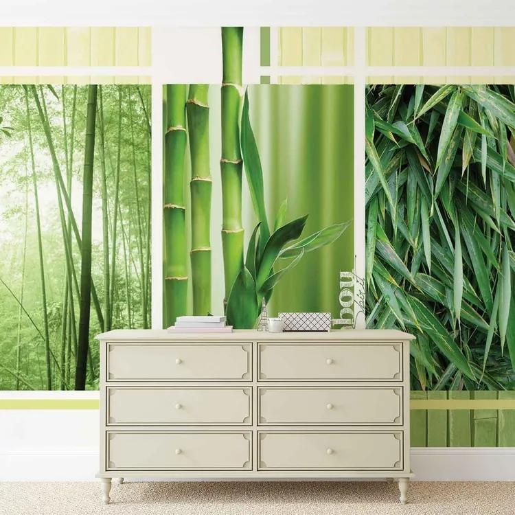 Bamboo Forest Nature Fototapet, (152.5 x 104 cm)