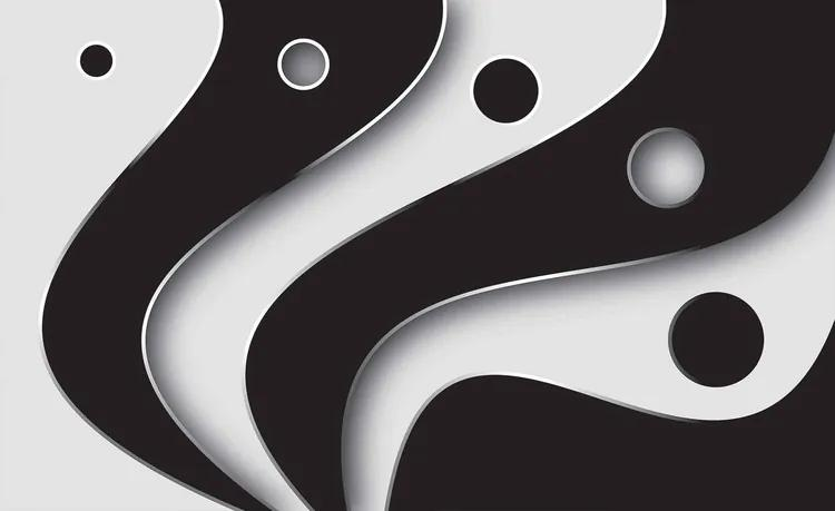 Abstract Modern Pattern Black White Fototapet, (250 x 104 cm)