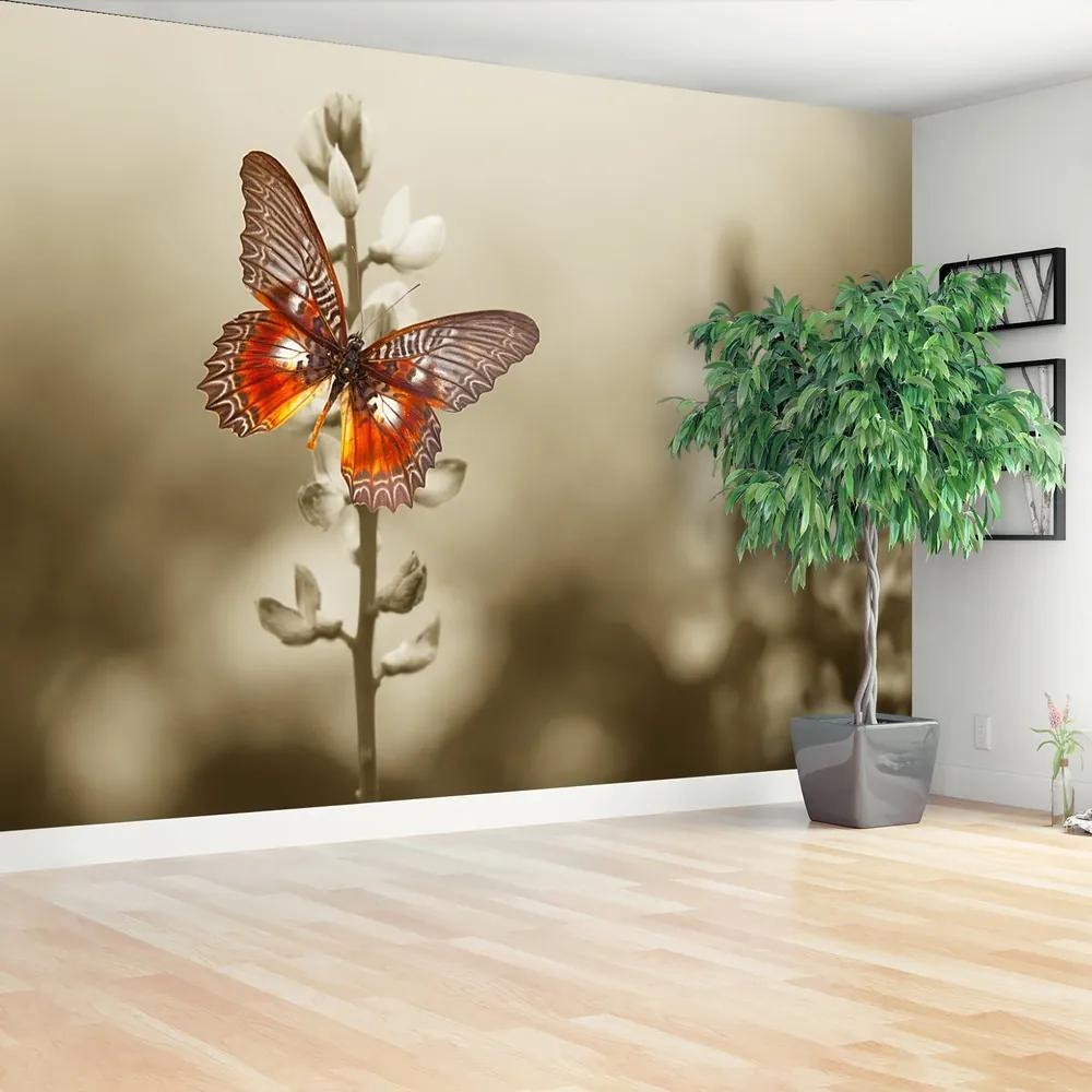 Fototapet fluture flori