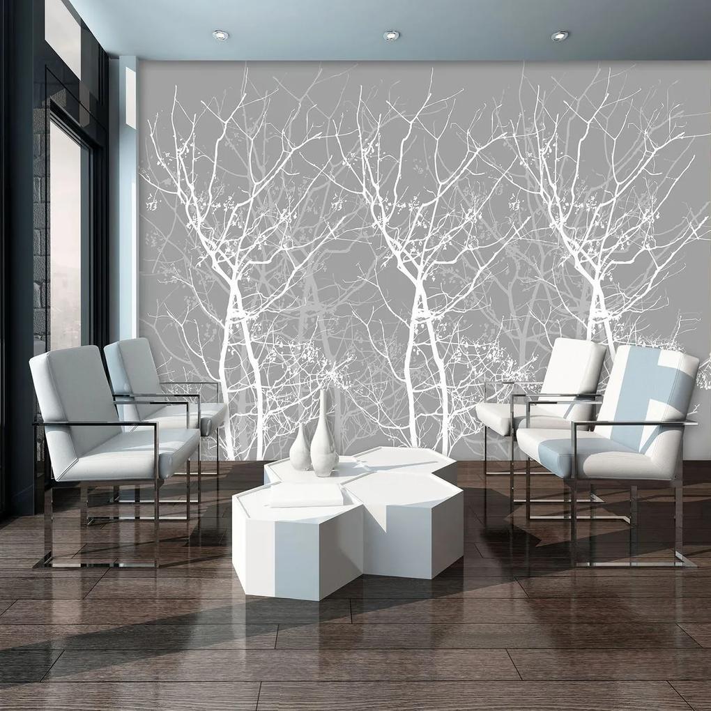 Fototapet - Conturul copacului (152,5x104 cm), în 8 de alte dimensiuni noi