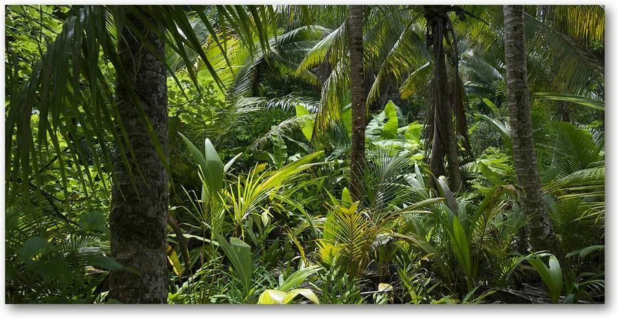 Fotografie imprimată pe sticlă Padure tropicala