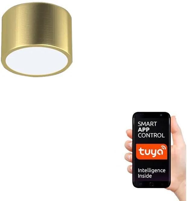 Plafonieră LED Immax Neo 07127L RONDATE LED/12W/230V ZigBee aurie + telecomandă
