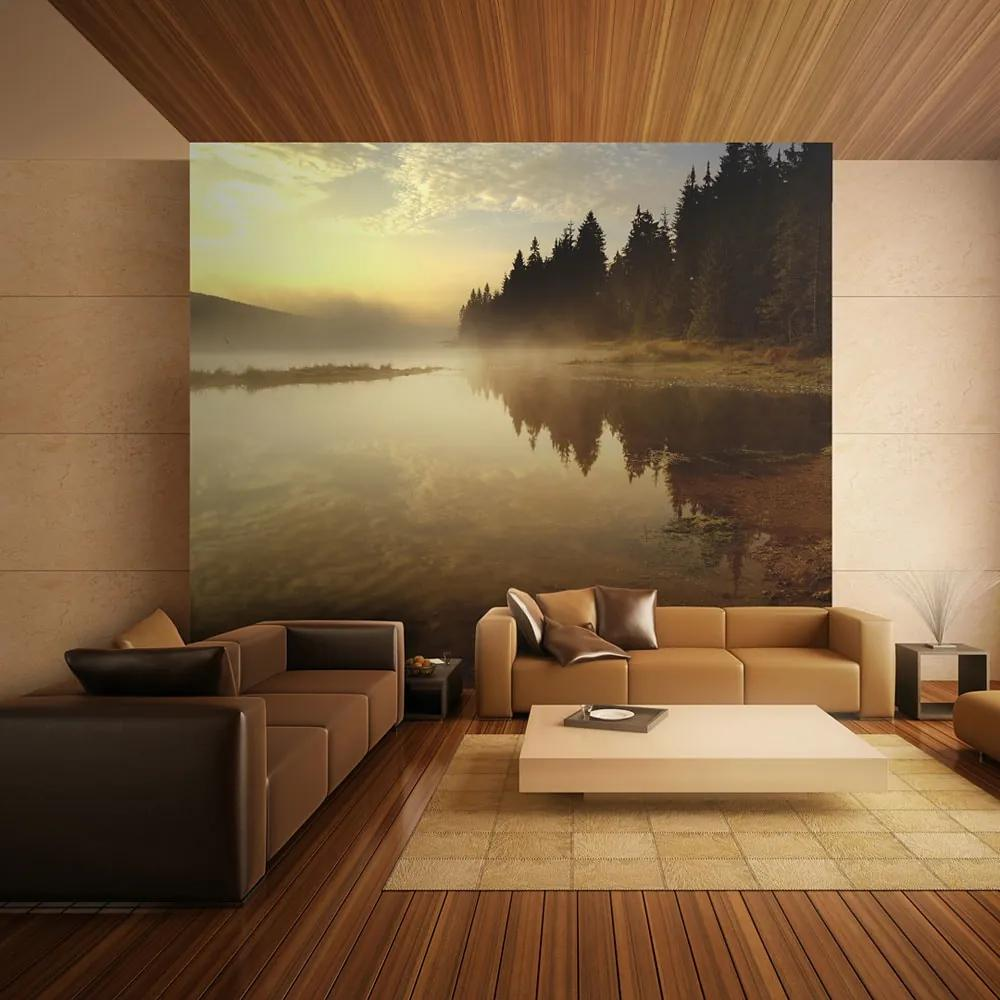 Fototapet - Forest and lake