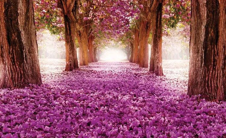 Flowers Tree Path Pink Fototapet, (368 x 254 cm)