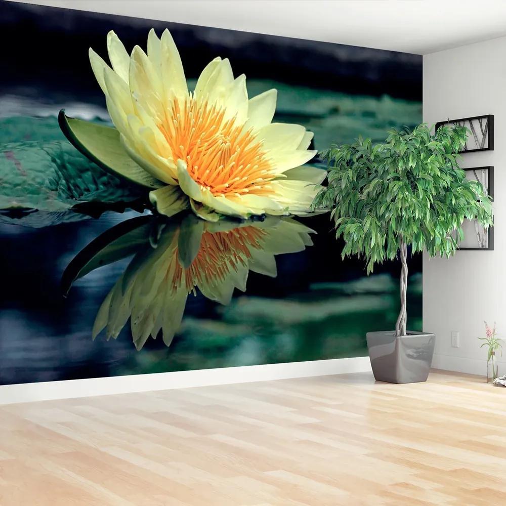 Fototapet Floare de lotus