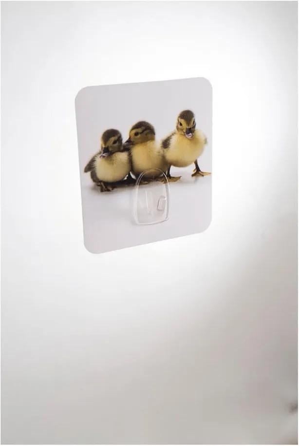 Cârlig de perete Compactor Magic Ducks