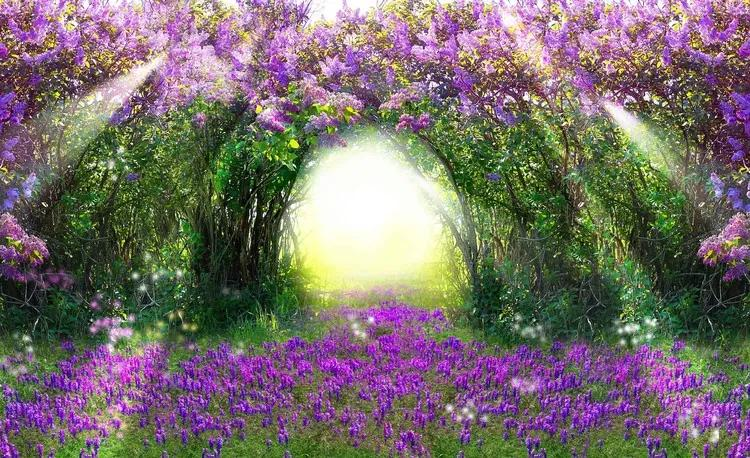 Flowers Purple Forest Light Beam Nature Fototapet, (152.5 x 104 cm)