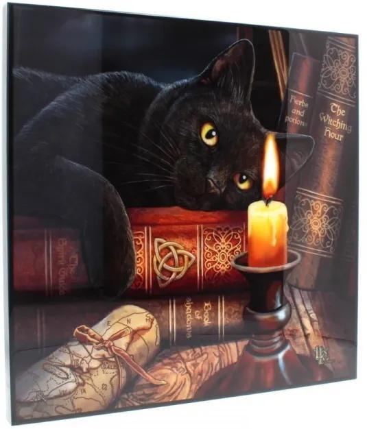 Tablou MDF imagine super clara pisica Ora Vrajitoarelor - Lisa Parker 40 cm