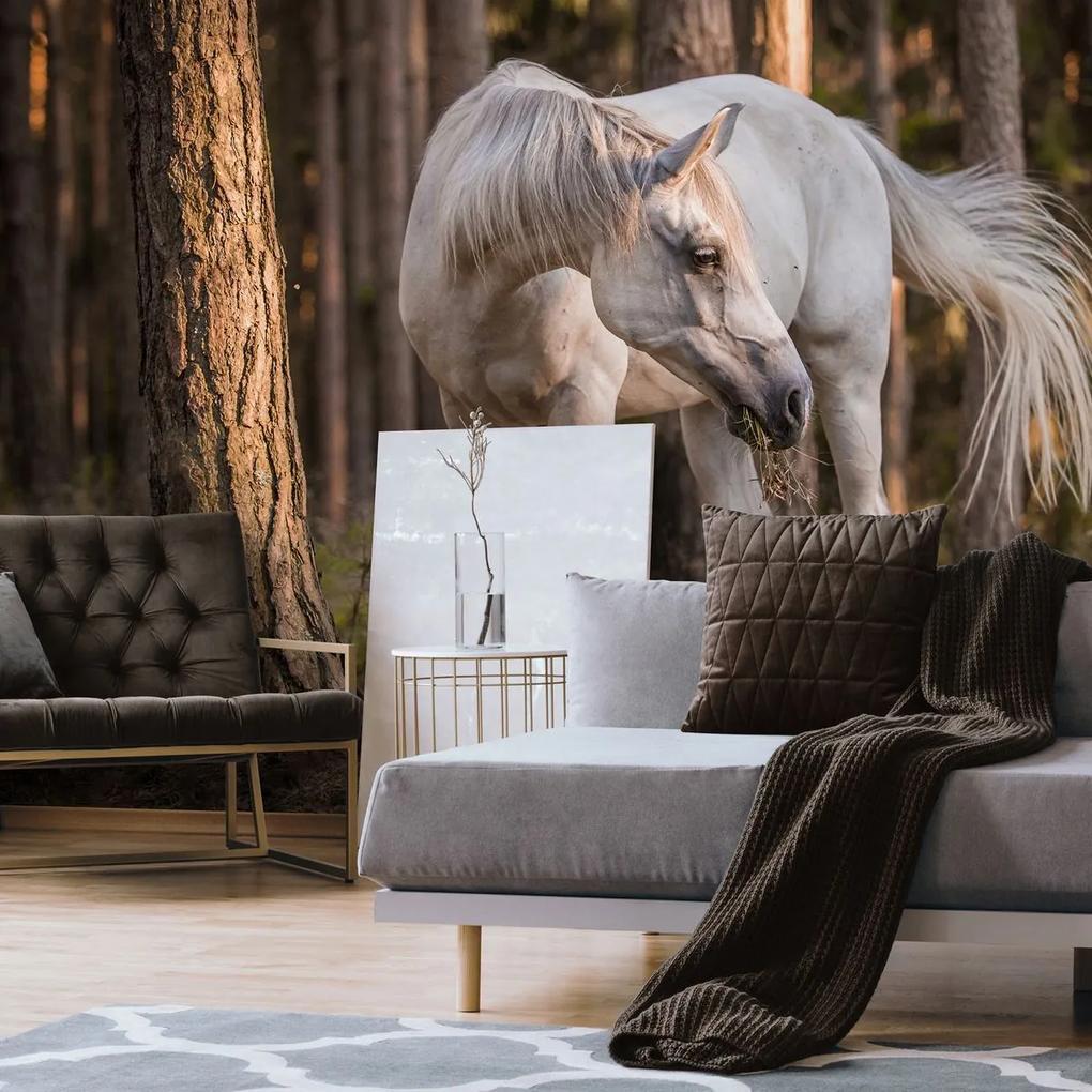 Fototapet - Calul alb în pădure (254x184 cm), în 8 de alte dimensiuni noi
