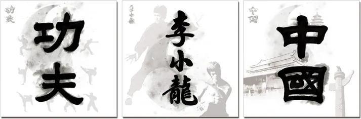 China Signs - Kung Fu. Bruce Lee, China Tablou, (180 x 60 cm)