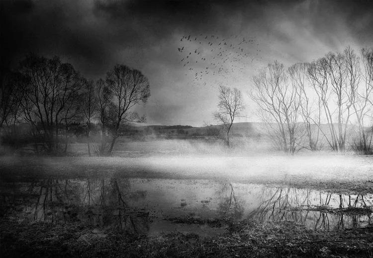 After The Rain Fototapet, (254 x 184 cm)