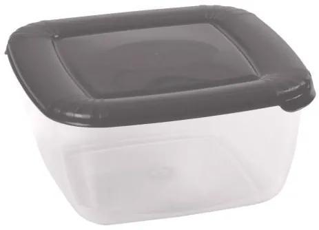 Recipient Pentru Alimente Plastic 0.46 L cu capac Albert Gri