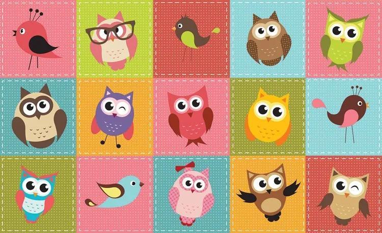 Owls Fototapet, (152.5 x 104 cm)