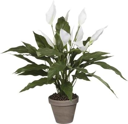 Floare artificiala, Spathiphyllum, alb