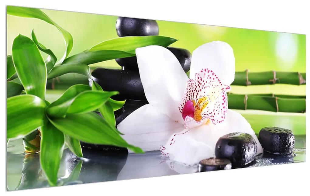 Tanblou cu orhidee (K011995K12050)