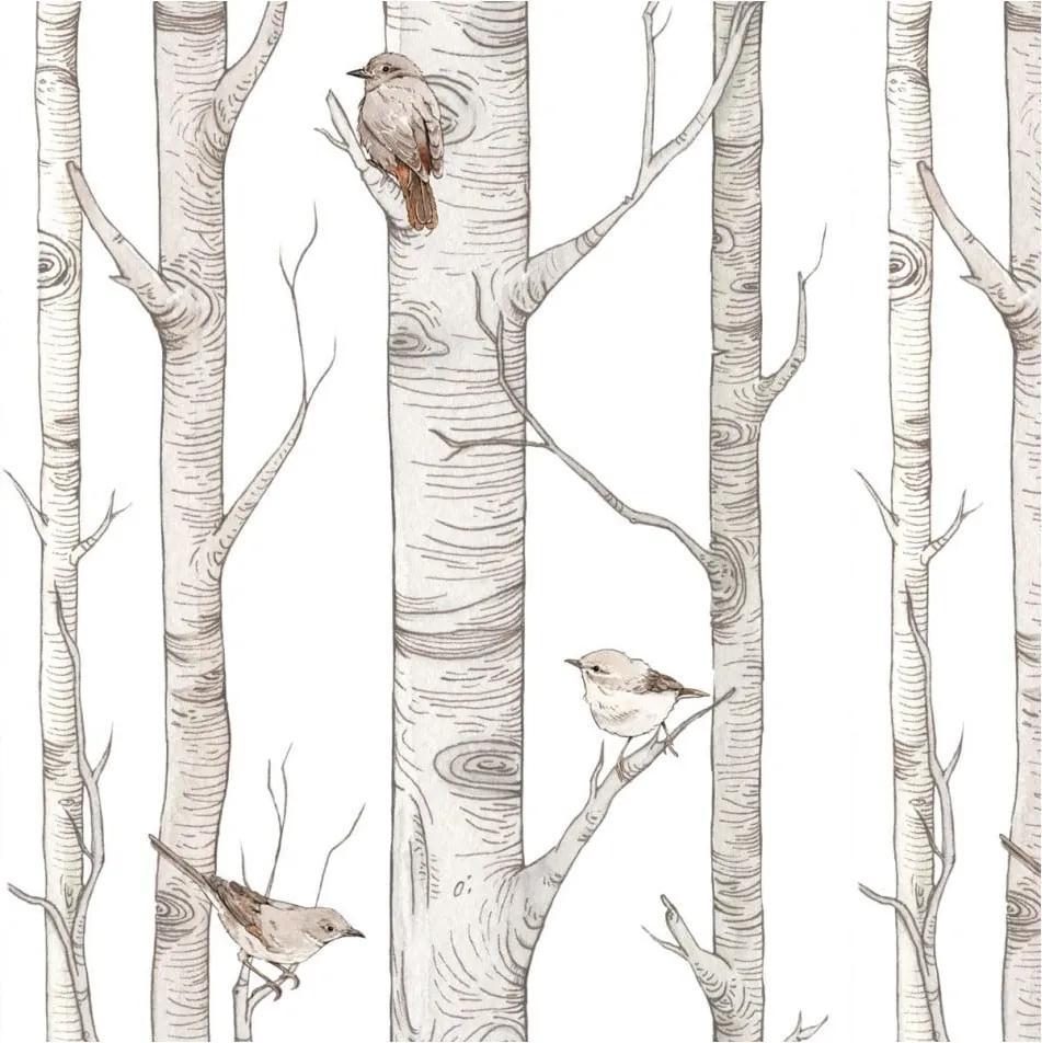 Tapet cu model cu mesteceni Dekornik Scandinavian Birch