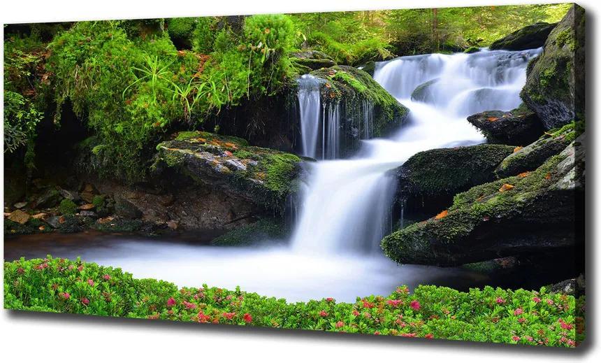 Tablou pe pânză canvas Cascada din pădure