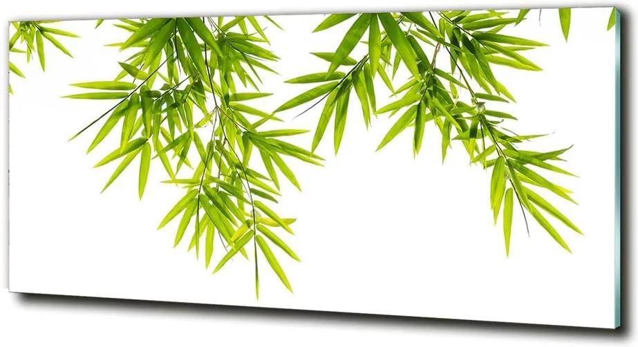 Tablou Printat Pe Sticlă Frunze de bambus