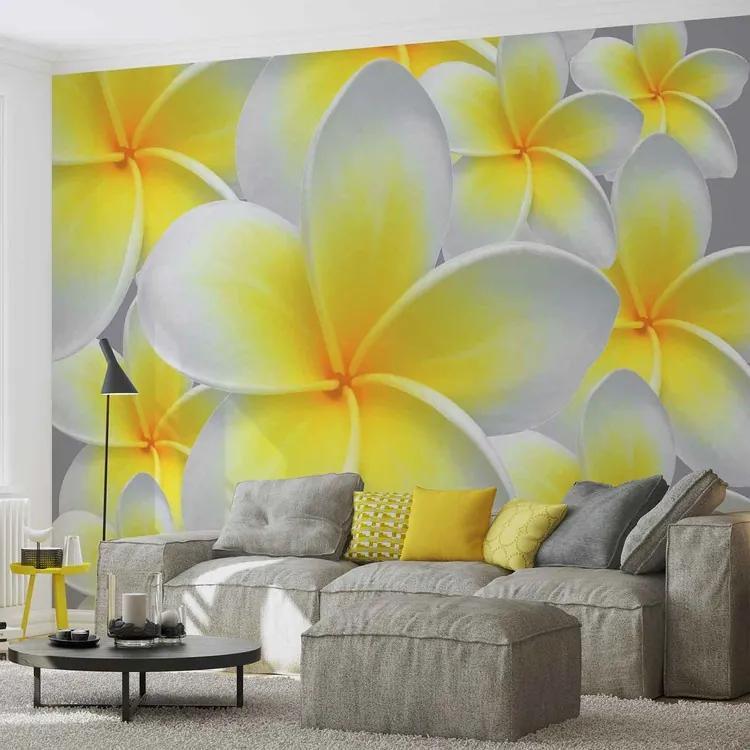 Floral Pattern Fototapet, (312 x 219 cm)