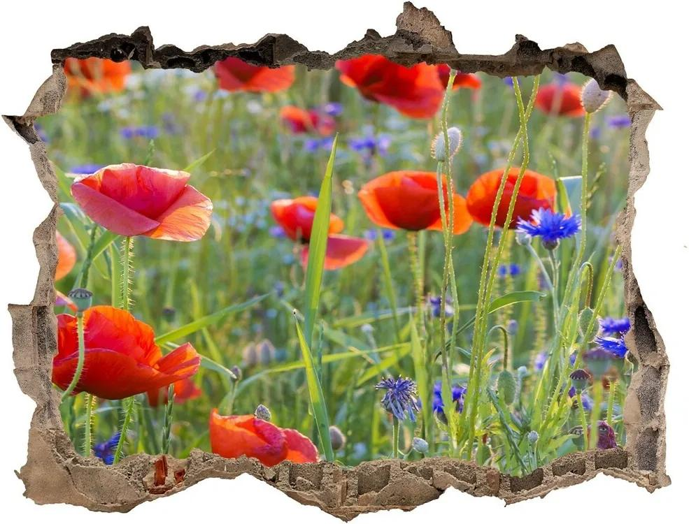 Fototapet un zid spart cu priveliște Flori de câmp