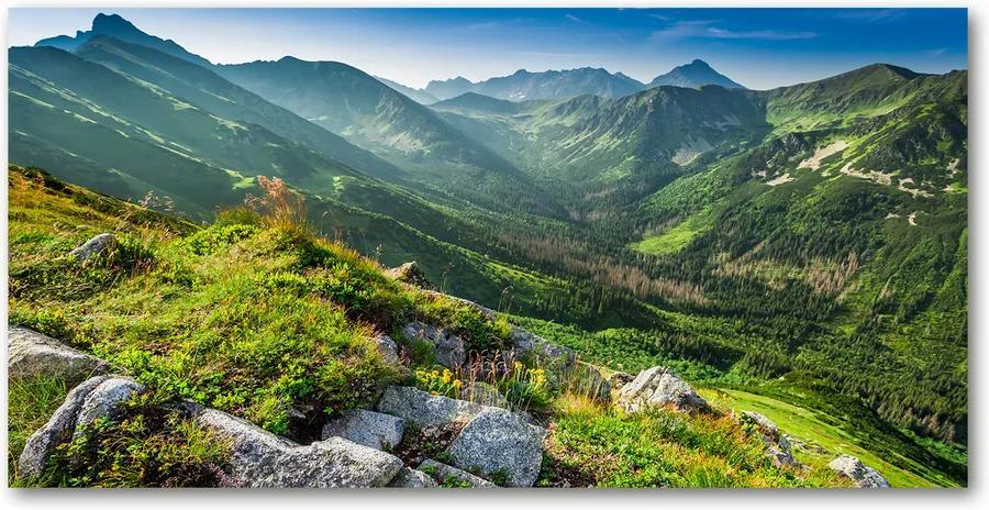 Fotografie imprimată pe sticlă Zori în munții tatra