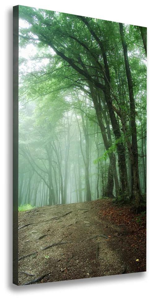 Imprimare tablou canvas Ceață în pădure