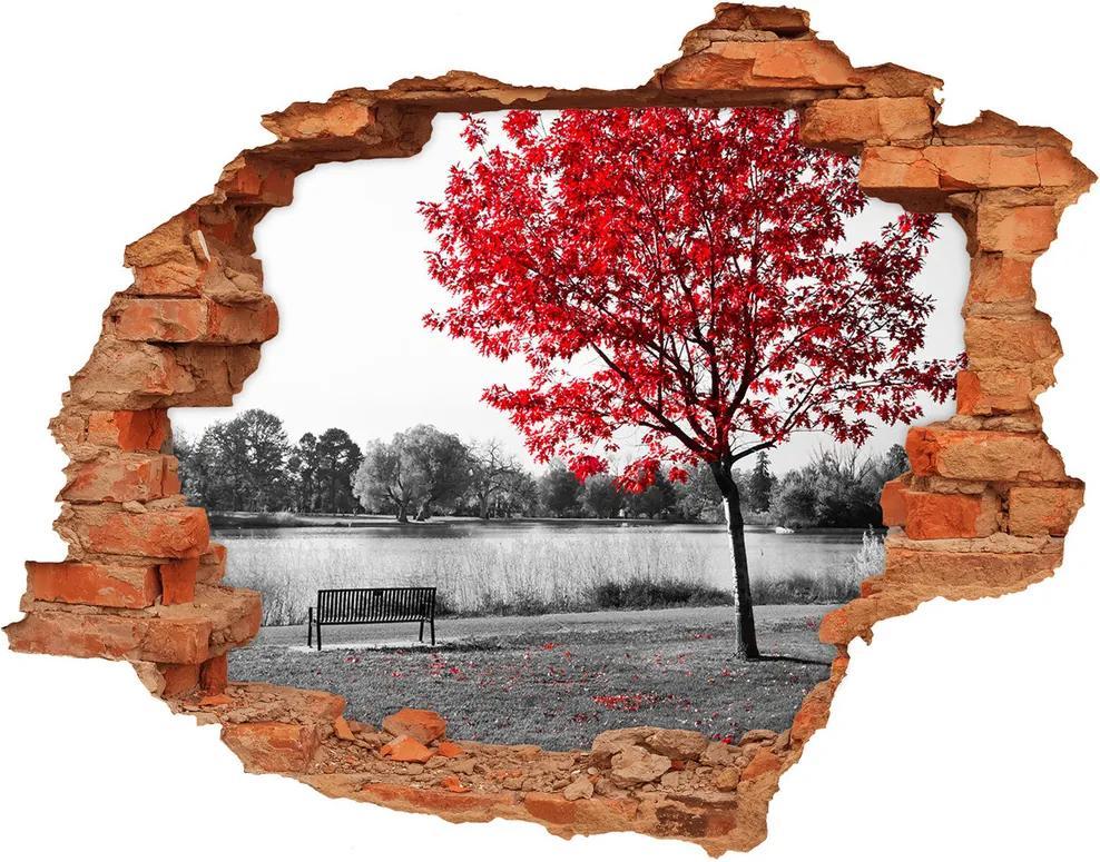 Fototapet 3D gaură în perete Copac roșu
