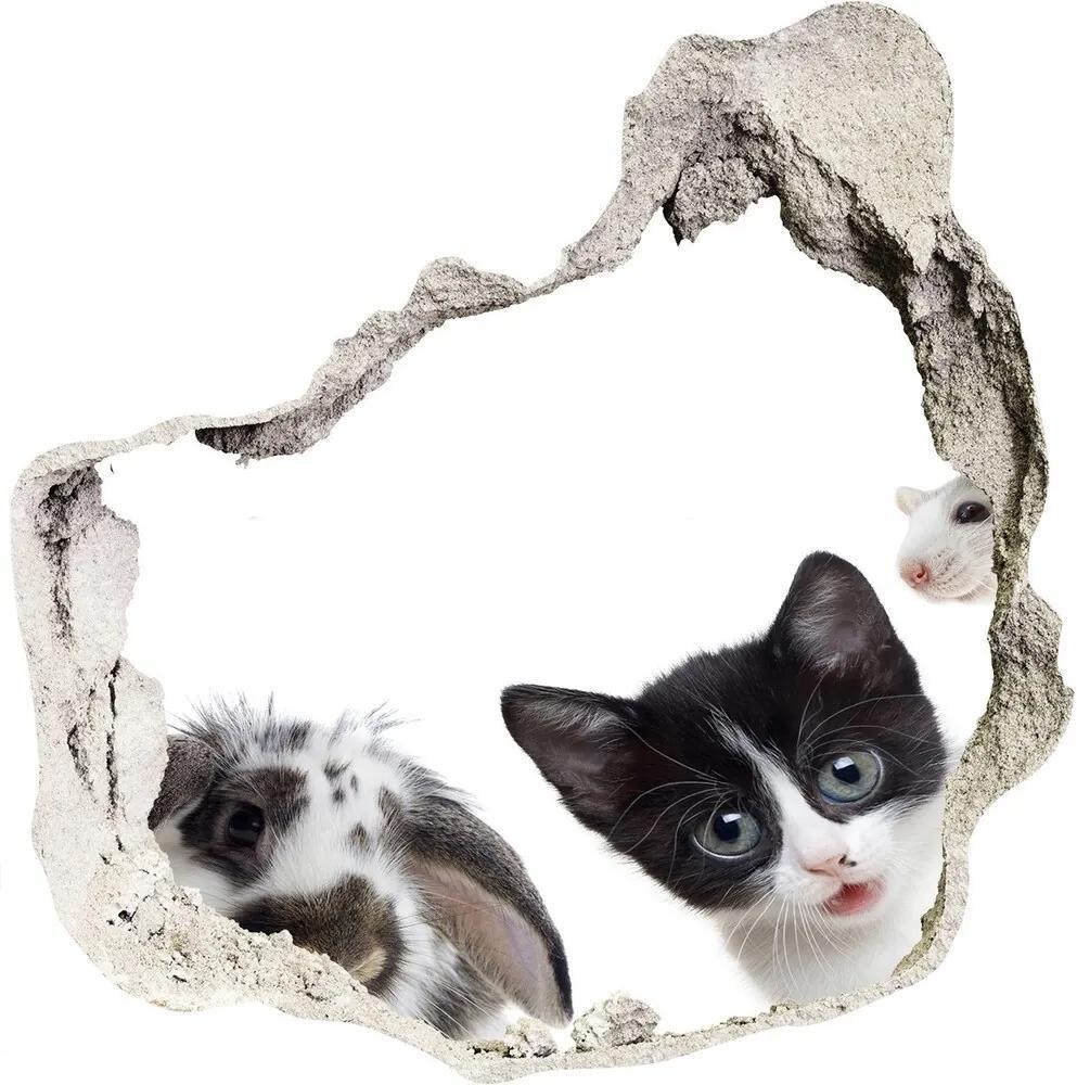 Fototapet un zid spart cu priveliște Animale de companie