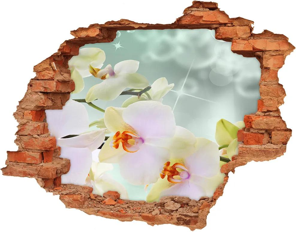 Autocolant de perete gaură 3D Alb orhidee