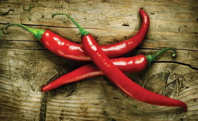 Hot Chillies Food Wood Fototapet, (254 x 184 cm)
