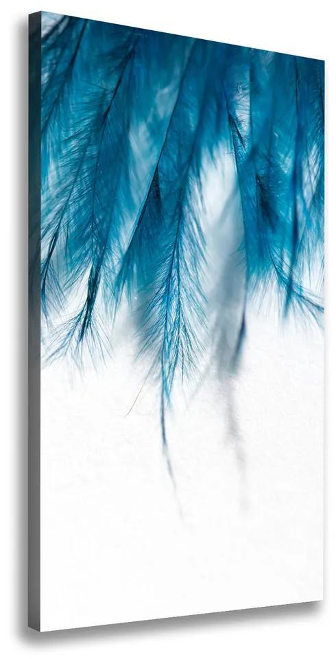 Tablou pe pânză canvas Pene albastre