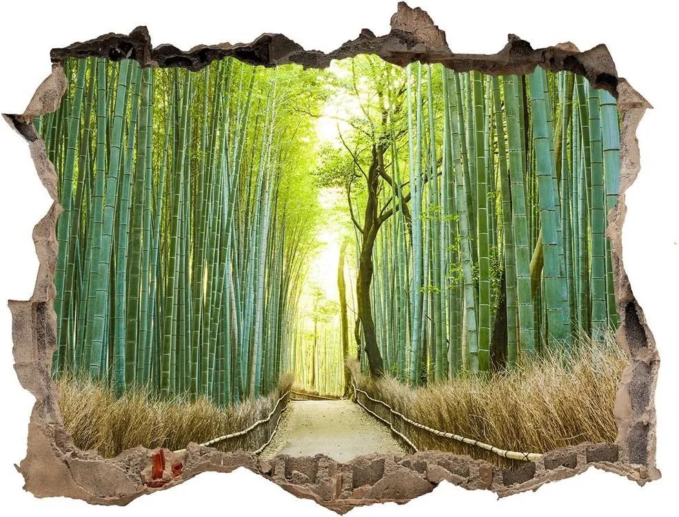 Fototapet 3D gaură în perete Pădure de bambus