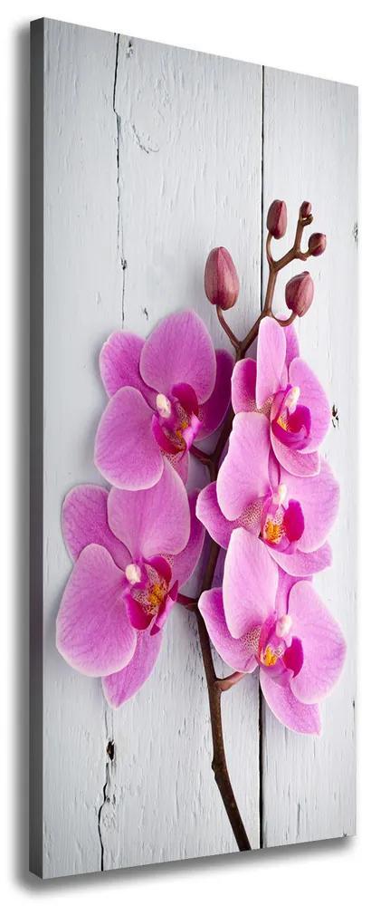 Print pe pânză Orhidee roz