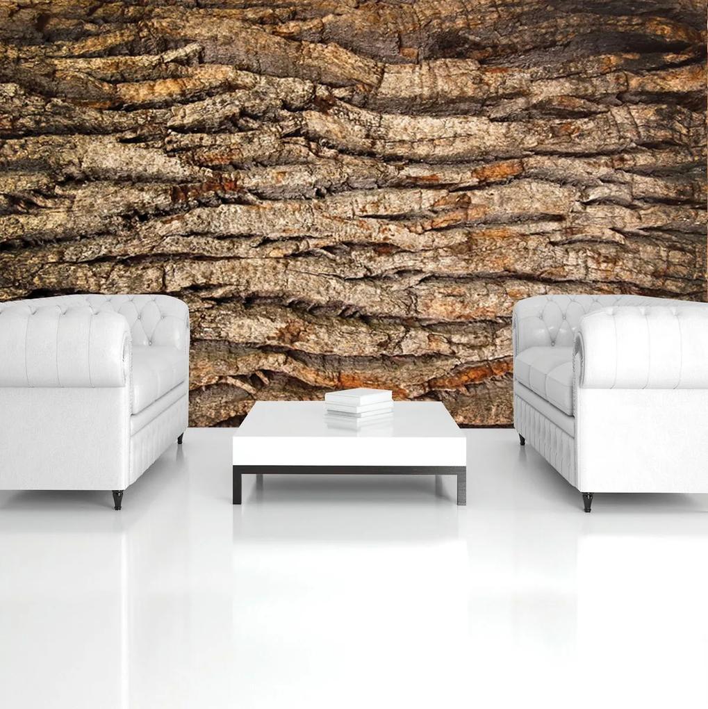Fototapet - Coaja de copac (152,5x104 cm), în 8 de alte dimensiuni noi