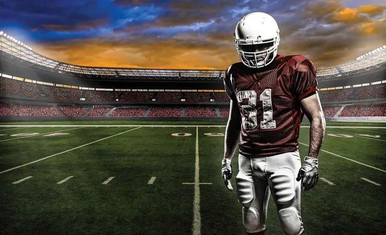 American Football Stadium Fototapet, (208 x 146 cm)
