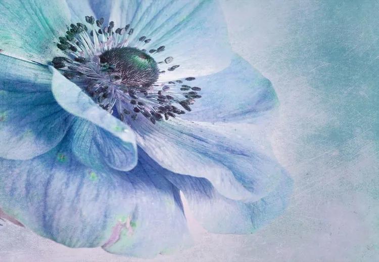 Shades Of Blue Fototapet, (104 x 70.5 cm)