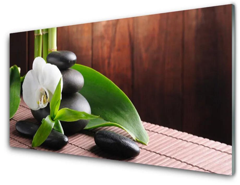 Tablou pe sticla acrilica Pietrele de flori Frunze Floral Alb Negru Verde