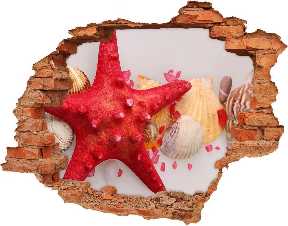 Autocolant 3D gaura cu priveliște Starfish și scoici