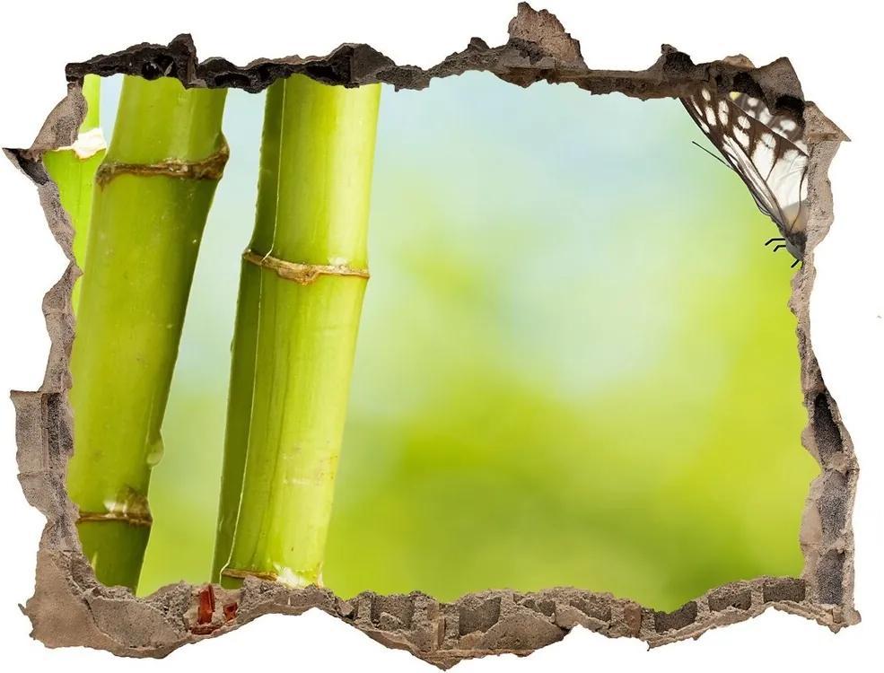 Fototapet un zid spart cu priveliște Bambus și fluture