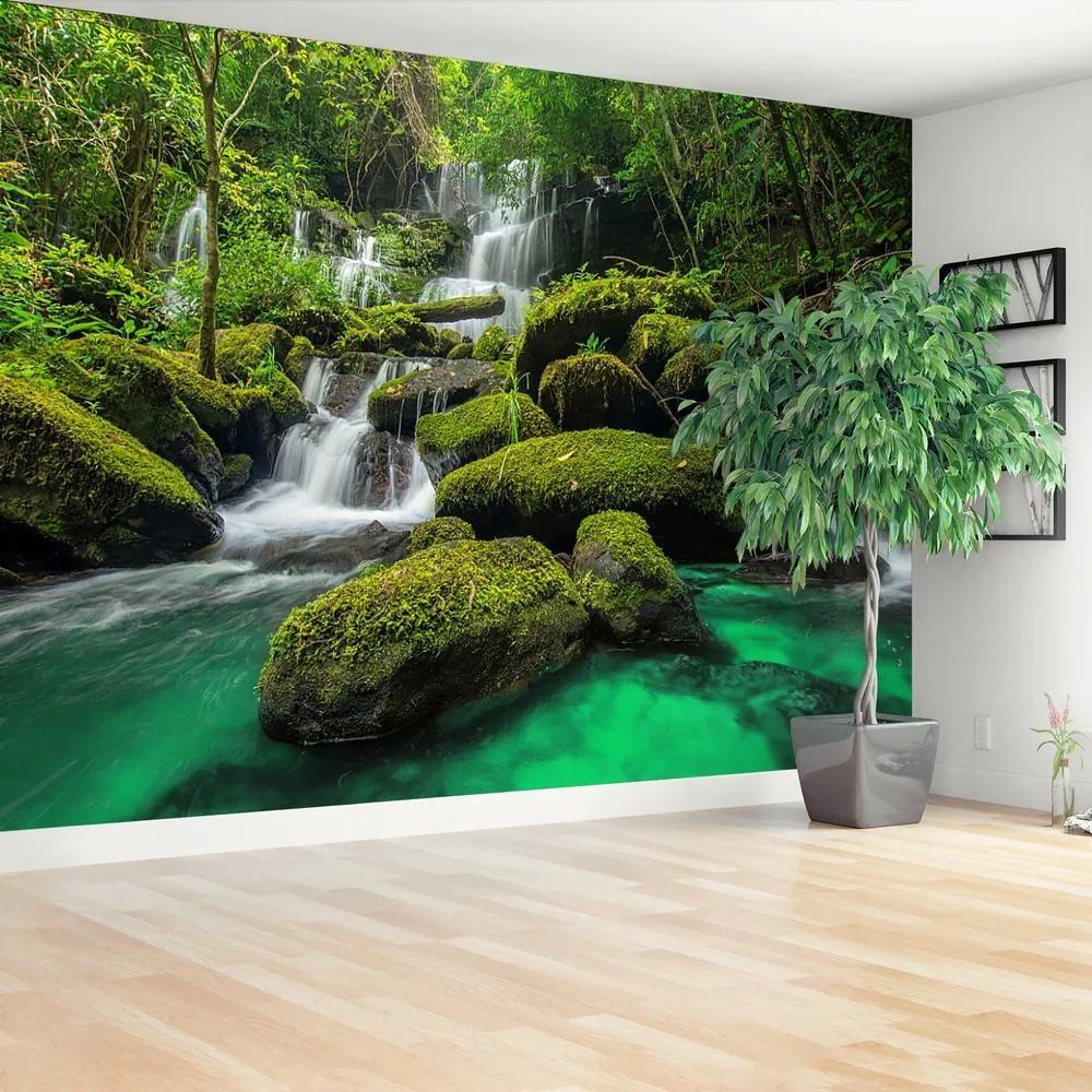 Fototapet Cascada in jungla