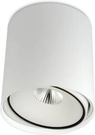 Tube 16 W 4000 K DALI - Spot aplicat cilindric ajustabil din aluminiu
