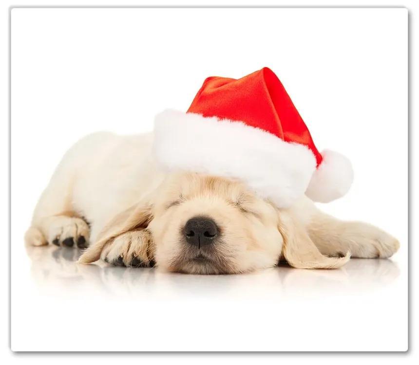 Tocator din sticla Cățelușul pălăriei de iarnă a lui Moș Crăciun