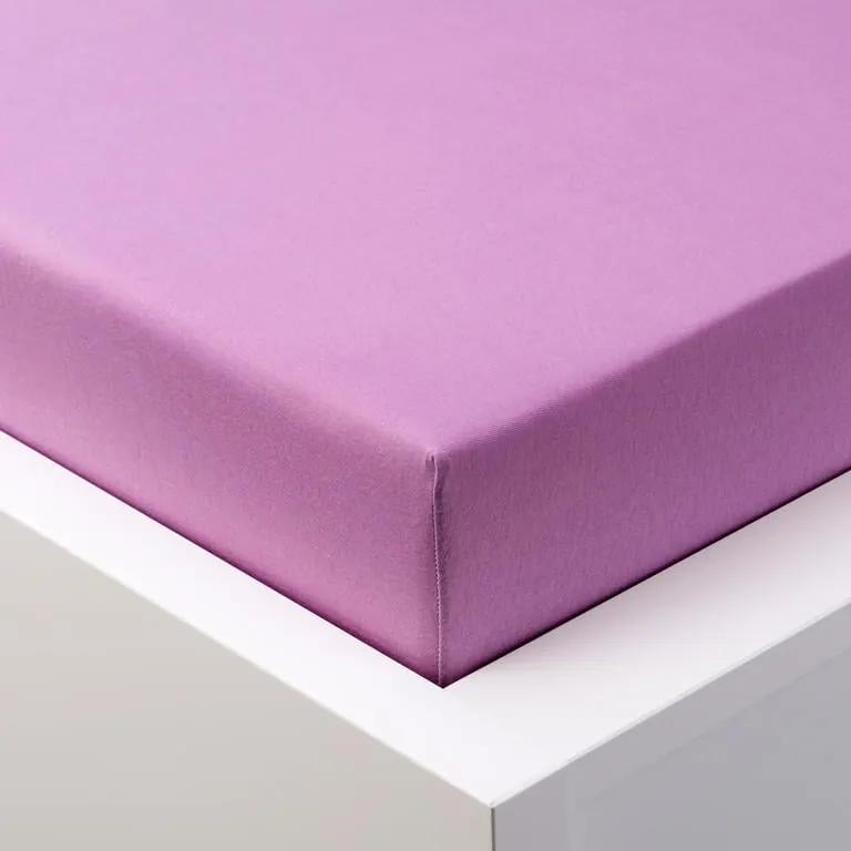 Cearşaf cu elastic jersey EXCLUSIVE violet pat dublu