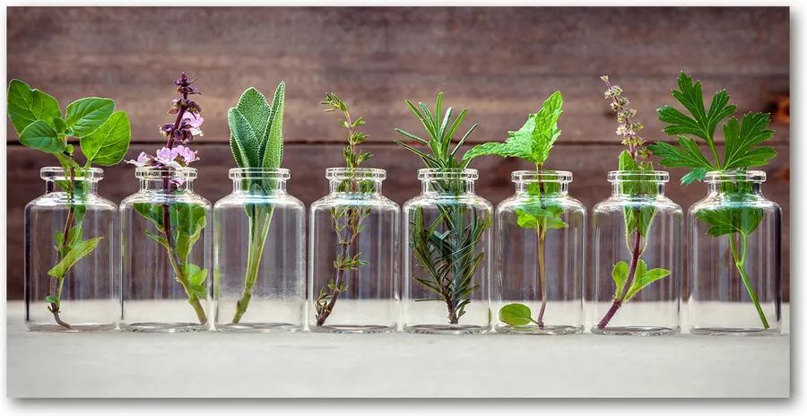 Fotografie imprimată pe sticlă Plantele în borcane